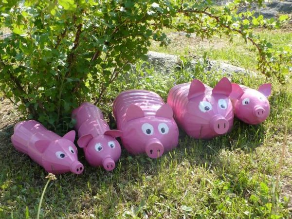 Свинки из пластиковых бутылей