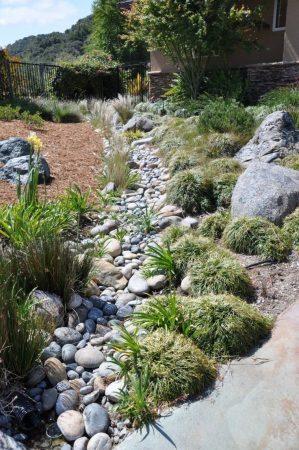 Ручей из камня с растениями в ландшафте