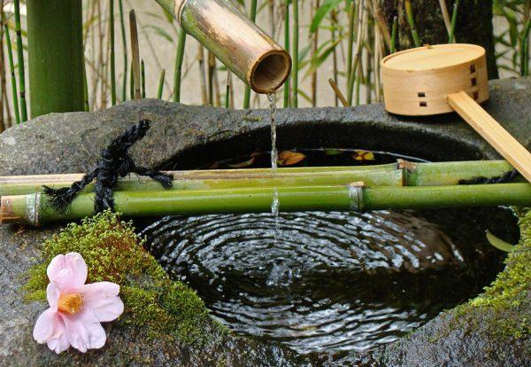 Цукубаи в японском ландшафтном дизайне