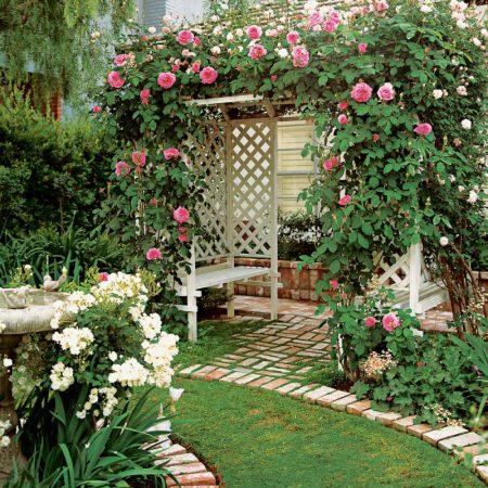 Беседка с розами в ландшафтном дизайне