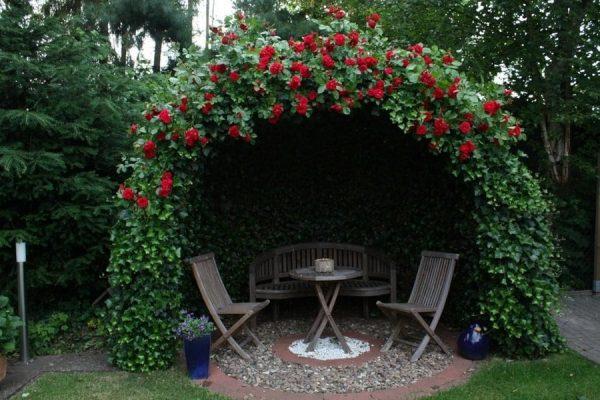 Беседка с красными розами в ландшафтном дизайне
