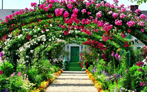 Арки из роз в ландшафтном дизайне