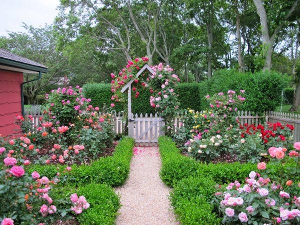 Калитка с розами в ланшафтном дизайне