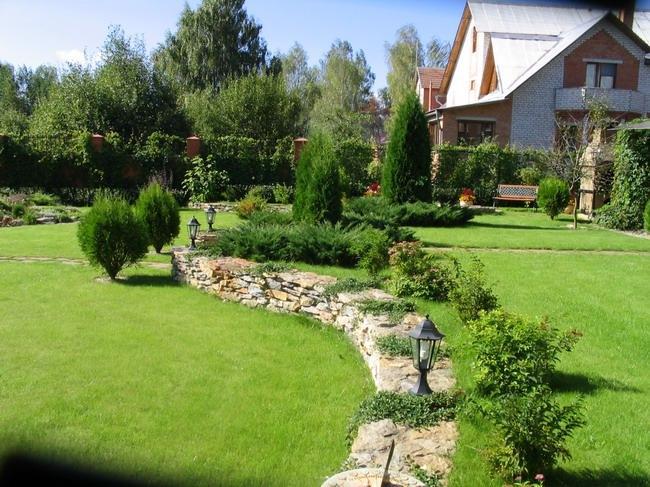 Как обновить газон, не перекапывая старый