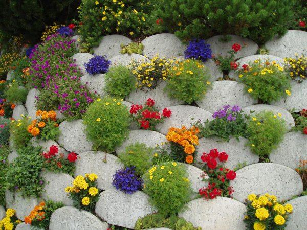 Маскировка некрасивого газона камнями с цветами