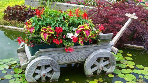 Старая тележка с цветами на газоне