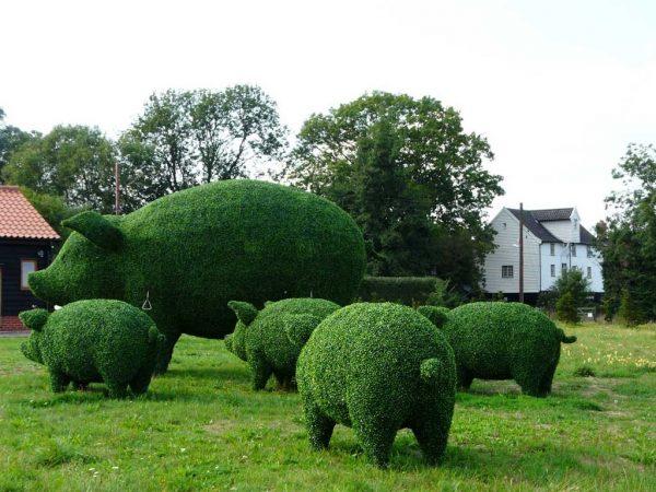 Фигурки свинок