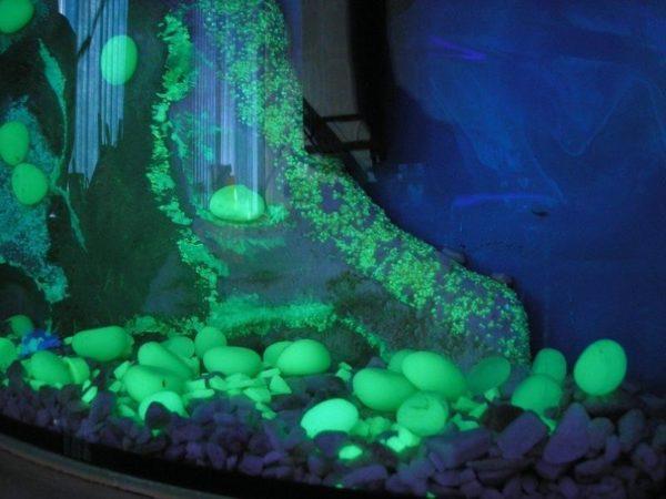 Светодиодные декоративные камни как источник дополнительного освещения