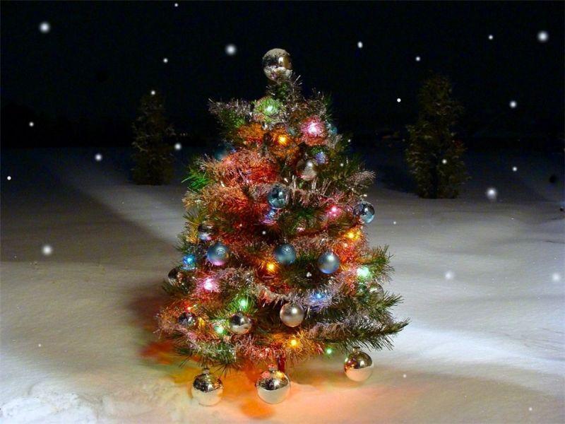 Как украсить ёлку на улице в Новый год – идеи на фото