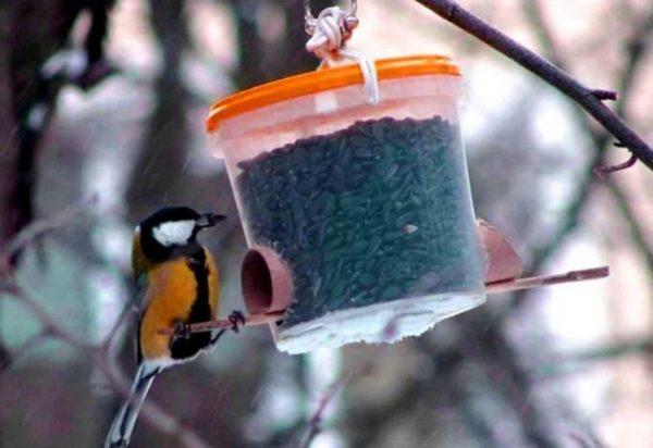 кормушка для птиц из пластикового контейнера