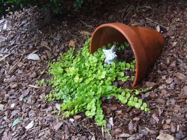 декор огорода разбитыми горшками