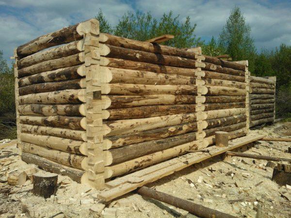 строительство дома из осины