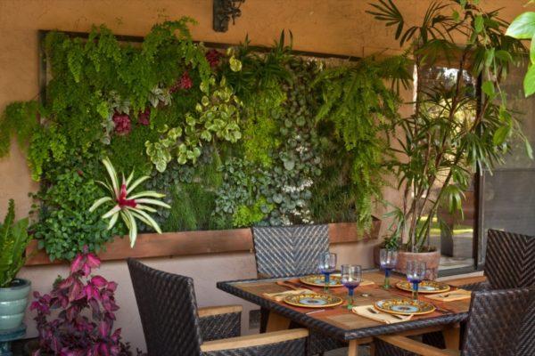 Комнатные растения в панно