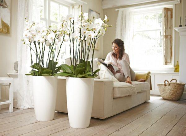 Искусственные орхидеи в интерьере