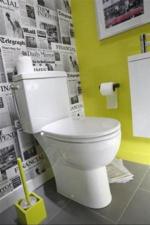 Акцентная стена в туалете