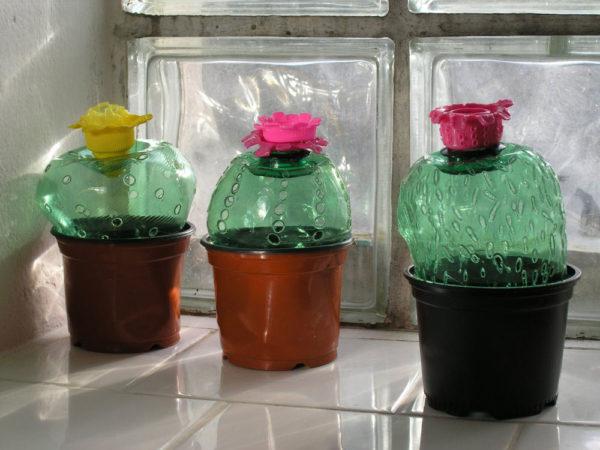Кактусы из пластиковых бутылок с перфорацией