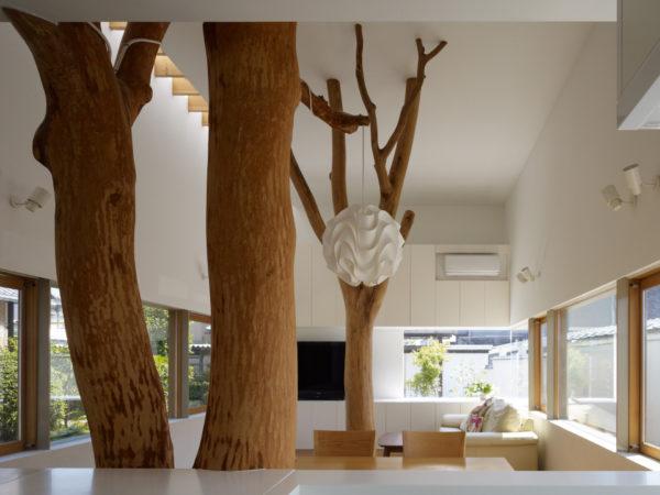 Крупные деревья в гостиной